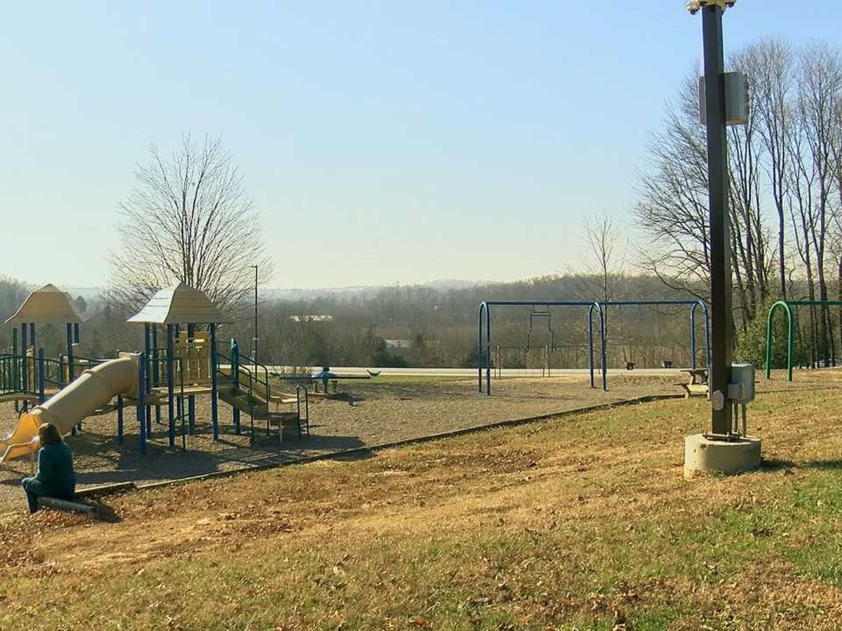 Project Guardian brings cameras, better security to Harrison County parks