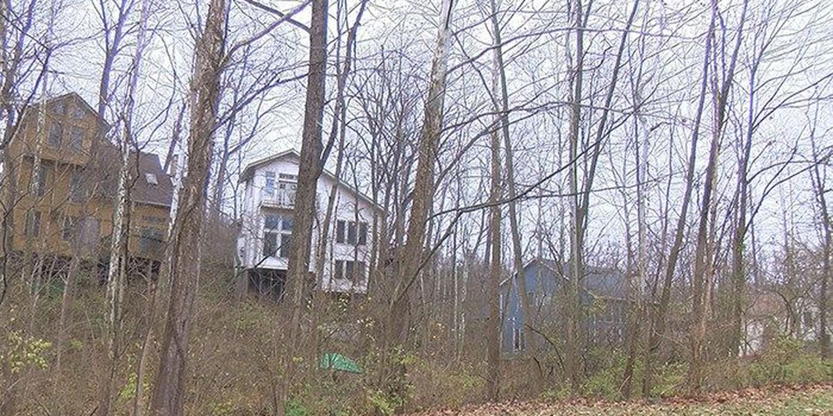 Neighbors disturbed by deer hunting near Indian Hills