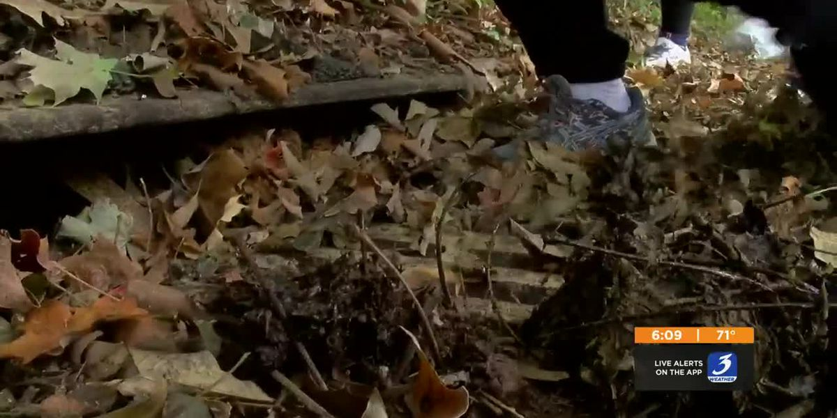 Community cleanup held in Clifton neighborhood